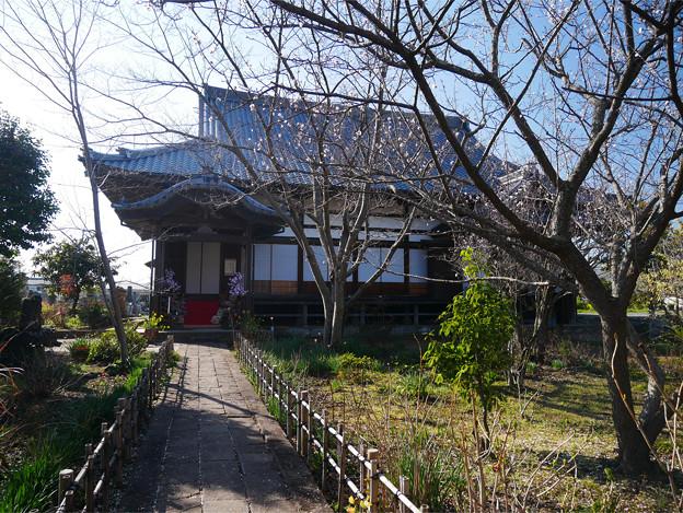 養徳寺 (3)