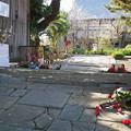 Photos: 養徳寺 (2)