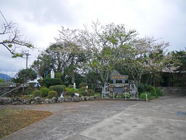 カトリック山田教会 (4)