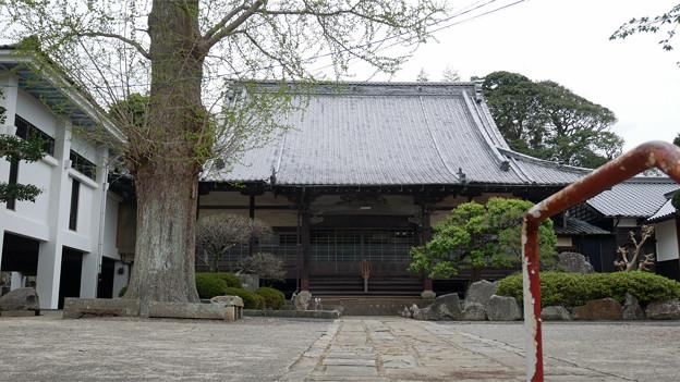 光明寺 (2)