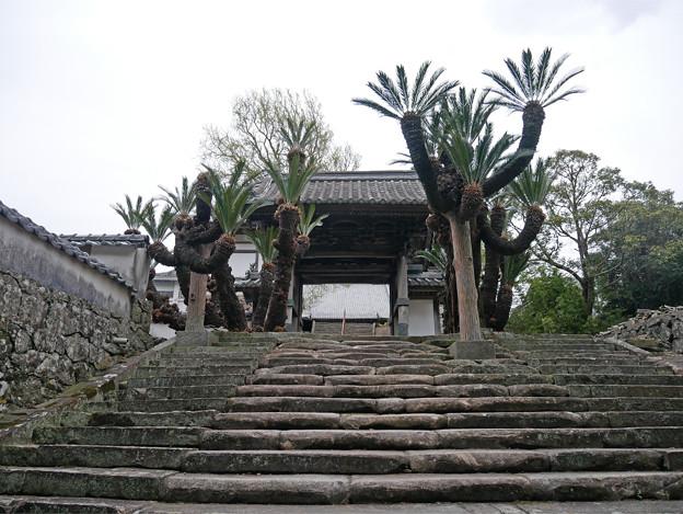 光明寺 (1)