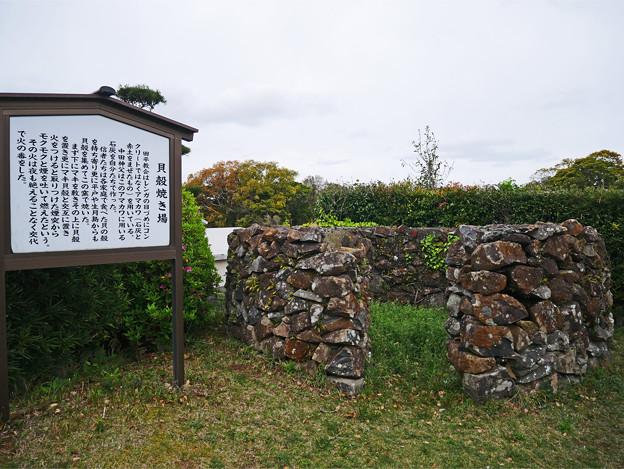 田平天主堂 (14)