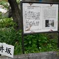 城山小学校の永井坂 (2)