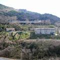 八木山花木園 (10) 八木山畜産センター