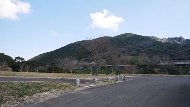 八木山花木園 (9)
