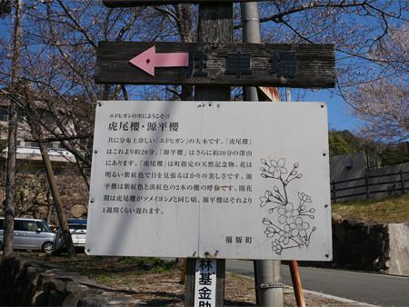 上野越ルート駐車場 (3)