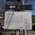 Photos: 上野越ルート駐車場 (3)