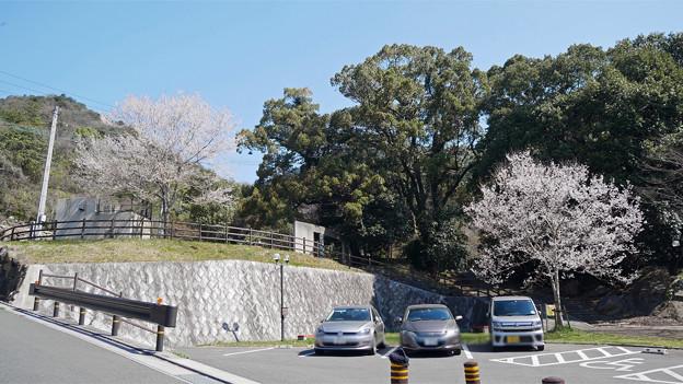 上野越ルート駐車場 (2)