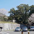Photos: 上野越ルート駐車場 (2)