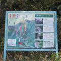 Photos: 福知山登山道案内図
