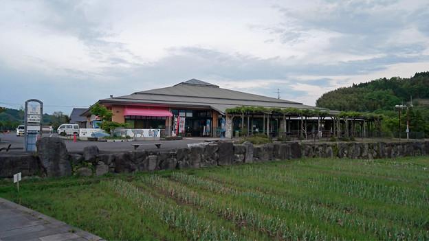 道の駅原尻の滝@2018 (5)