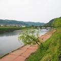 原尻橋 (2)