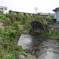 上年野橋 (7)