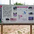 糸島市・東風小学校付近 (5)