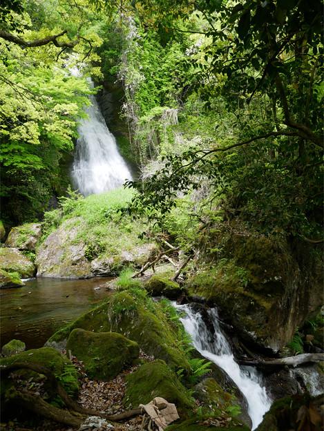 白水の滝 (17)