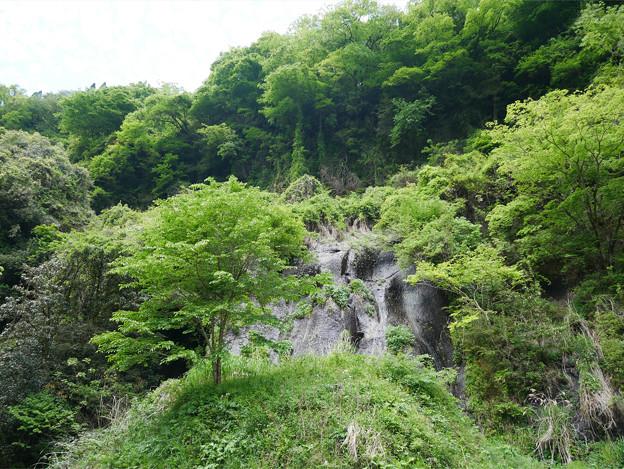 白水の滝 (14)