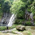 白水の滝 (22)