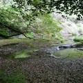白水の滝 (21)
