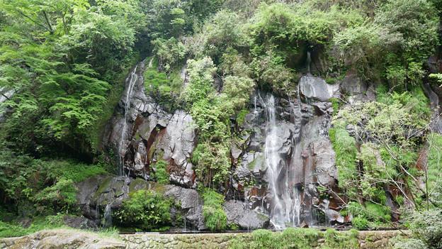 白水の滝 (24)