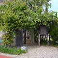 船小屋鉱泉場 (6)