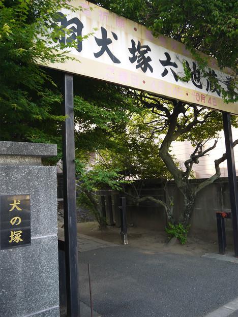 宗岳寺 (11)