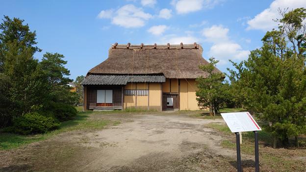 平原歴史公園の秋 (11)