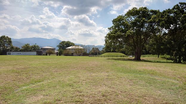 平原歴史公園の秋 (5)