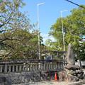 糸島市・老松神社 (1)