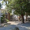 糸島市・老松神社 (5)