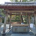 糸島市・老松神社 (4)