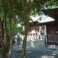 糸島市・老松神社 (8)