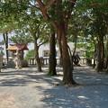 糸島市・老松神社 (7)