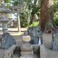 糸島市・老松神社 (10)