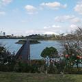 Photos: 駕与丁公園@2020秋 (19)