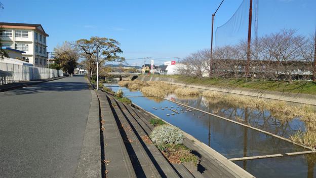 池田川河畔 (2)