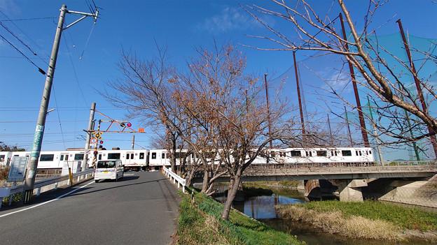 池田川河畔 (1)