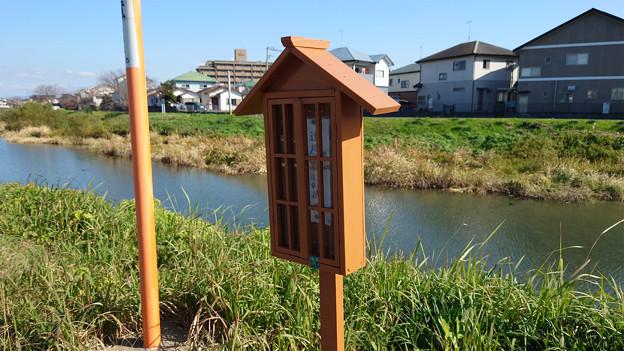 池田川河畔 (4)