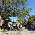 Photos: 波多江地区の老松神社 (1)