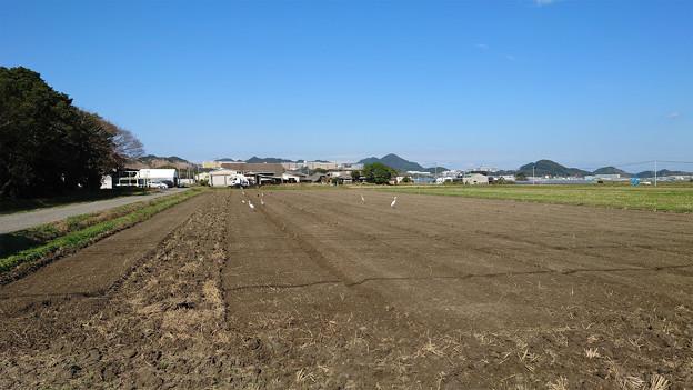 Photos: 志登神社近くの田園