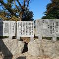 Photos: 志登神社 (5)