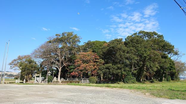 志登神社 (1)