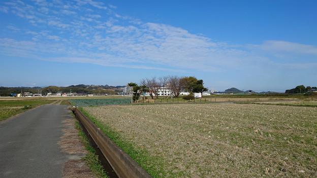 志登支石墓群 (4)