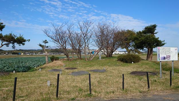 志登支石墓群 (3)