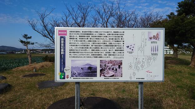 志登支石墓群 (2)