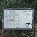 石ヶ崎支石墓 (3)