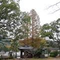 Photos: 縫ノ池 (15)