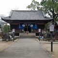 豊玉姫神社 (1)