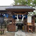 豊玉姫神社 (2)