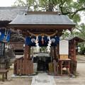 豊玉姫神社 (3)