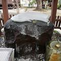 豊玉姫神社 (4)